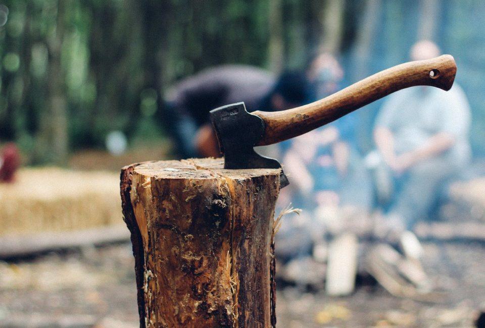 aziende agroforestali taglio legna
